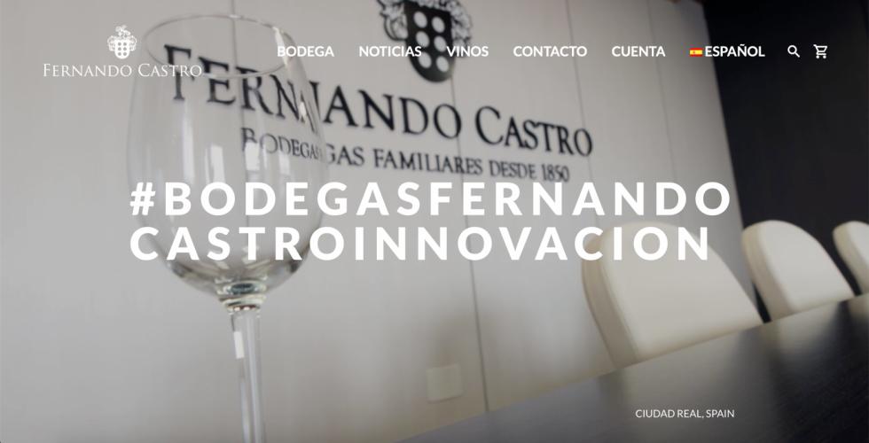 Web Bodegas Fernando Castro 1