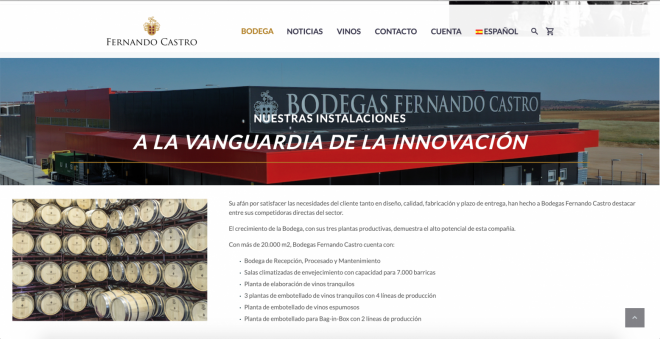 Web Bodegas Fernando Castro 2