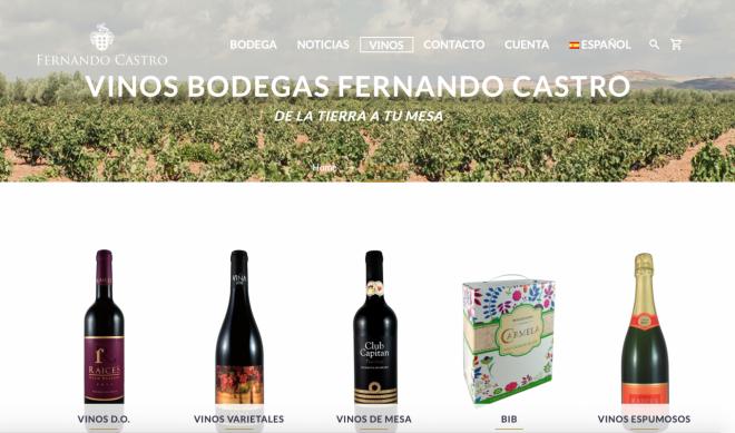 Web Bodegas Fernando Castro 3